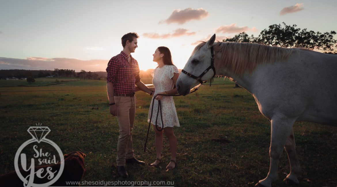 Country pre-wedding sunset photo shoot with a white horse in Ipswitch